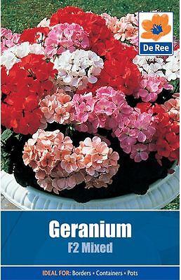Geranium F2 Mixed Flower Seeds approx. 8 seeds