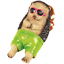 Novelty Garden Ornament Statue Sunbathing Hedgehog Hippo Or Sloth Frostproof