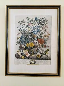 """Antique Robert Furber MAY Framed 24""""x18"""" Botanical Etching 12 Months of Flowers"""
