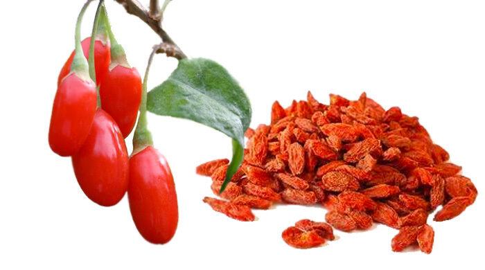 100 Goji Berry Seeds For Sale Online Ebay