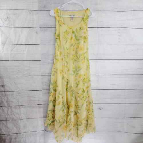 Dressbarn Cottagecore Fairycore Whimsical Floral A