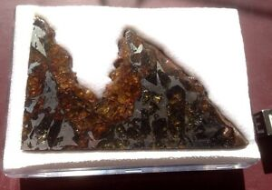 Admire-meteorite-pallasite-from-Kansas-large-partslice