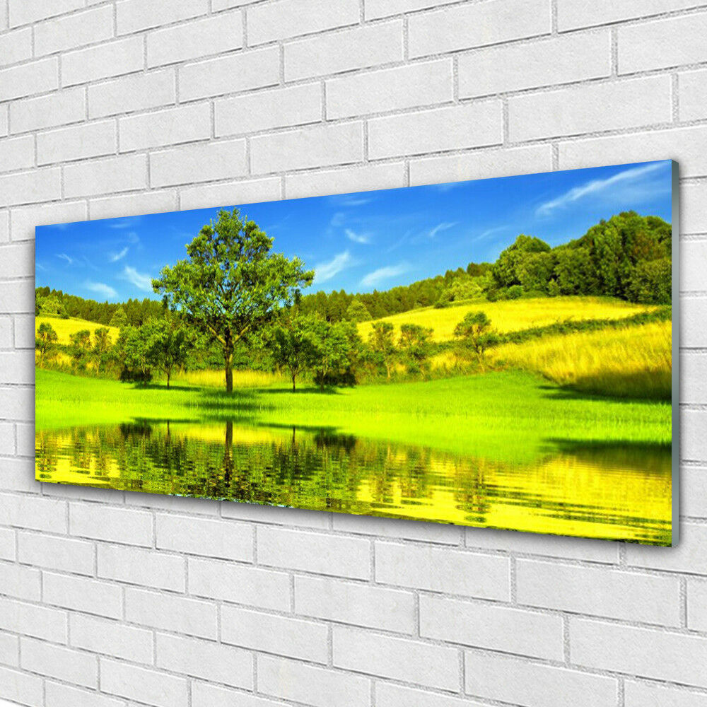Impression sur verre Image tableaux 125x50 Nature Arbre Prairie