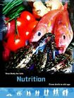 Nutrition: From Birth to Old Age by Robert Snedden (Paperback, 2014)