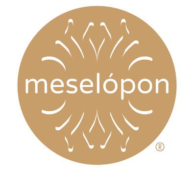 Meselopon Ltd