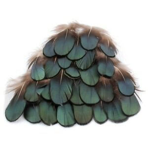 50pcs-Green-Amherst-Pheasant-Feather-for-Crafts-DIY-Decorative-Handicrafts