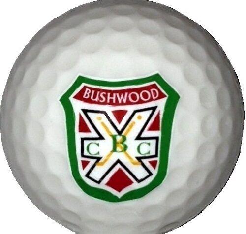 (36) 3 Dozen Caddyshack Bushwood C.C. LOGO Callaway Mix AAAA Used Golf Balls