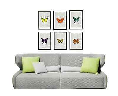 6 Beautiful Butterflies UNIQUE Upcycled Vintage prints Antique Pages