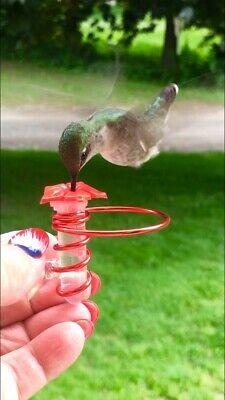 New Micro Hum Fi Hand Held Hummingbird Feeder W Perch Window Cling Ebay