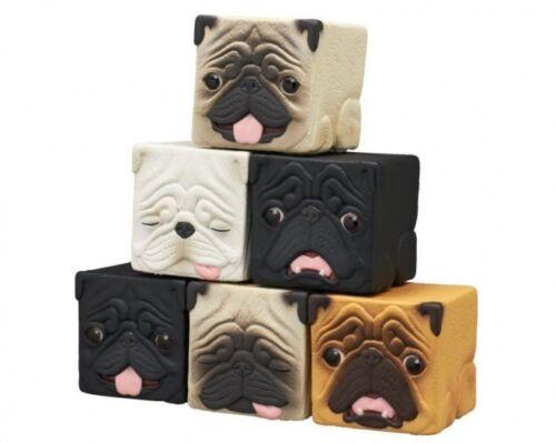 Hako Pug Cute Kawaii Plastic BLK BRN Sleeping Dog Gashapon 1 Blind Box Figure