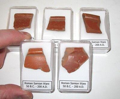 Roman Samian Ware Terra sigillata pottery fragments 200g COA Non UK Find COA