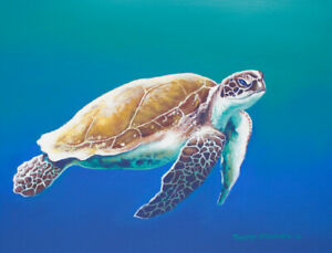 Original Acrylic Painting of a Sea Turtle 11x14 Wildlife Art by Timothy Stanford