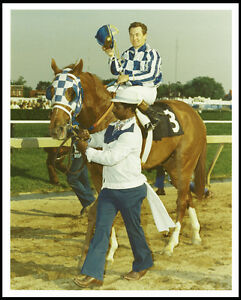 SECRETARIAT-1973-PREAKNESS-STAKES-HORSE-RACING-PHOTO-FOLLOWING-THE-RACE