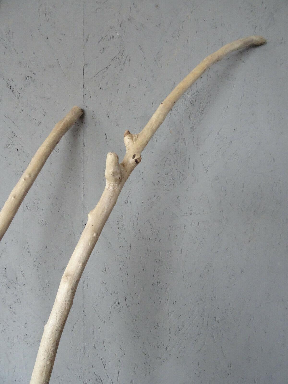 Jetzt im Angebot Treibholz Driftwood Schwemmholz Ast