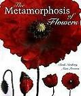 The Metamorphosis of Flowers by Marie Perennou and Claude Nuridsany (1998, Hardcover)