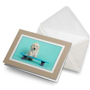 Greetings-Card-Biege-Skateboarding-Labrador-Puppy-Dog-21416