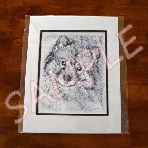 Keeshond Puppy Portrait Original Art Print 8x10 Matted to 11x14