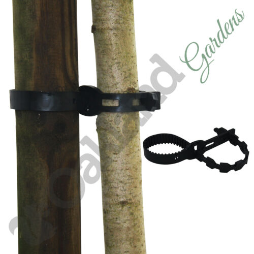 """12/"""" Super Soft Rubber Tree Ties Straps Plant Support Whip Bareroot 25 X 30cm"""