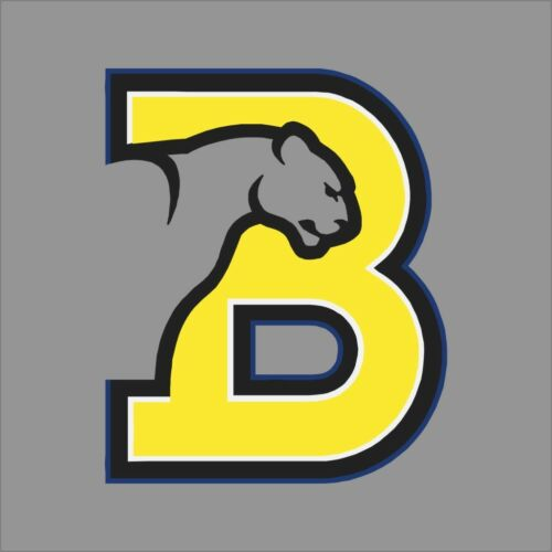 Birmingham Southern Panthers NCAA College Vinyl Sticker Decal Car Window Wall