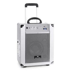 mobile party box mit bluetooth usb wiedergabe radio tuner 50w sound lautsprecher ebay. Black Bedroom Furniture Sets. Home Design Ideas