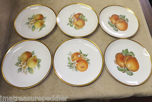 Image is loading 6-Bavaria-Hutschenreuther-Selb-Germany-Pasco-Fruit- Decorated- & 6 Bavaria Hutschenreuther Selb Germany Pasco Fruit Decorated Plates ...