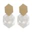 Women-Geometric-Acrylic-Dangle-Drop-Statement-Long-Earring-Ear-Stud-Boho-Jewelry thumbnail 19