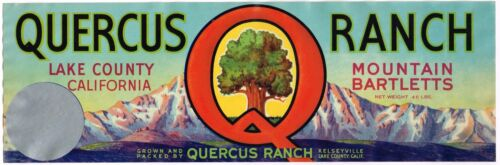 PEAR CRATE LABEL LAKE COUNTY QUERCUS RANCH KELSEYVILLE ORIGINAL 1//2 BOX BLOCK