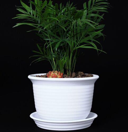 6 Inch Plastic Round Drainage Plant Pot Saucer TrayOutdoor Indoor Flowers White