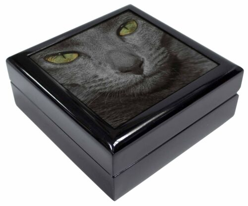 Grey Cats Face Close-Up Keepsake//Jewellery Box Christmas Gift AC-82JB