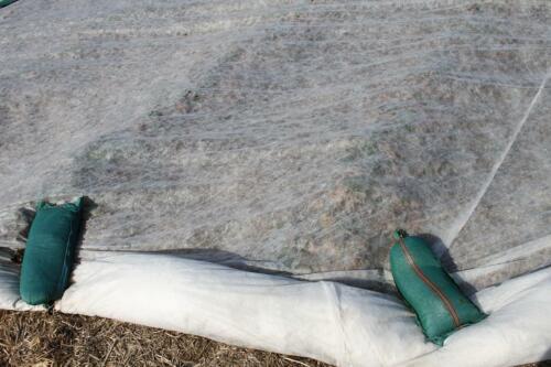 Wachstumsvlies Vlies Erdbeervlies Ernteschutzvlies Frostschutz 23g 4,20m x 50m