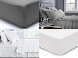 500 TC EXTRA DEEP FITTED SHEET 40cm 100/% EGYPTIAN COTTON DOUBLE SUPER KING SIZE