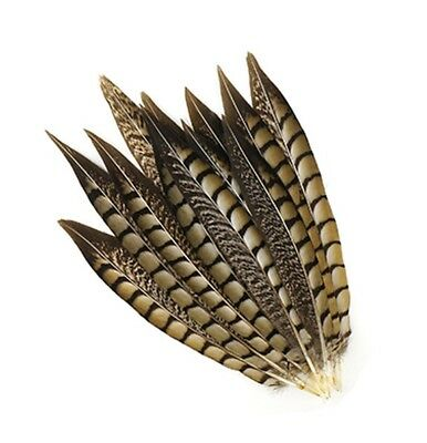 """10 Pcs LADY AMHERST PHEASANT Feathers 4-12/"""" RED TIP Top-Quality//Craft//Halloween"""