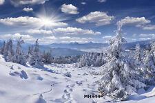 Winter Scenery Vinyl photography Backdrop Background studio prop 20x10FT MH844