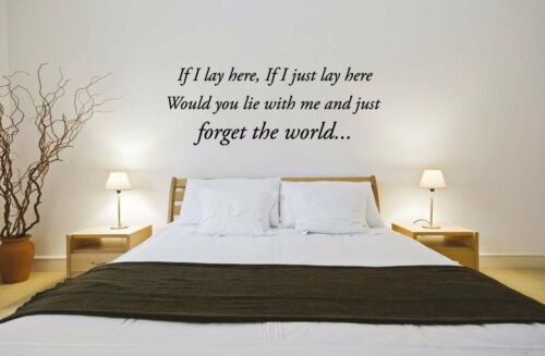 If I Lay Here Snow Patrol Song Lyrics Music WALL vinyl STICKER transfer