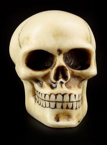 Totenkopf Schaltknauf knochenfarben Skull Schädel Totenschädel Auto Knauf