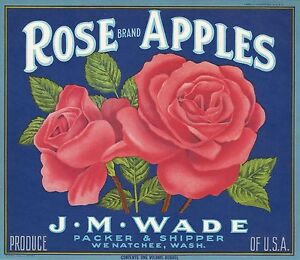 "(3) OLD ORIGINAL GORGEOUS 1930 ""ROSE/ GLADIOLA /DAISY BRAND"" CRATE LABELS ART CA"