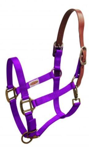 Showman PURPLE Nylon Breakaway Western Horse Halter W// Leather Crown HORSE TACK