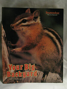 Superbe Image Is Loading Your Big Backyard Natl Wildlife Federation Magazine  September