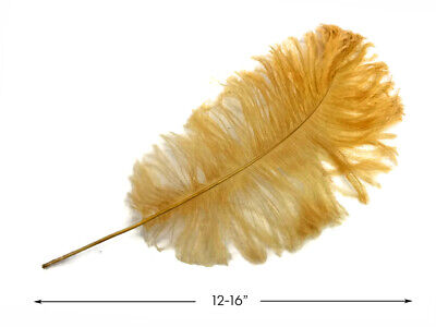 """10 Antique Gold Ostrich Tail Large Feathers Centerpiece Halloween Costume 12-16/"""""""