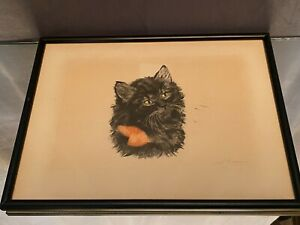 Lithografie Originell Anfang Xx Unterzeichnet A.Durand Au Katze Kätzchen