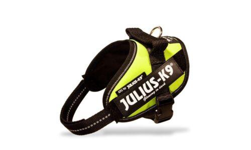 Julius K9 IDC Powerharness Dog Harness neon-green NEW