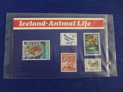 1 X Gestempelt Trendmarkierung 5 Briefmarken Island 4x Postfrisch Iceland In Schutzhülle