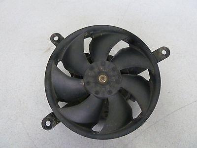 Honda CBR900-954 RR Lüfter für Kühler/fan for radiator/ventilator voor radiateur