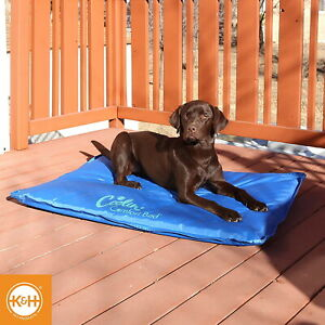 K-amp-H-LARGE-32-034-X-44-034-COOLIN-COMFORT-BED-FOR-DOGS-amp-PUPPIES-SUMMER-1724