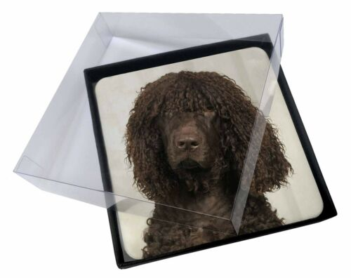 4x Irish Water Spaniel Dog Picture Table Coasters Set in Gift Box, ADIWSC