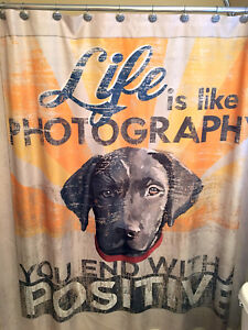 Details About NEW Black Labrador Retriever Dog Days Puppy Shower Curtain  Life Like Photography