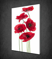 RED POPPIES FLOWERS STEMS MODERN CANVAS WALL ART PRINT PICTURE READY TO HANG