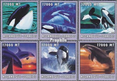 Mozambique 2686-2691 Unmounted Mint Animal Kingdom Never Hinged 2002 World Of Marine Packing Of Nominated Brand