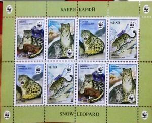 New-Tajikistan-2019-WWF-Snow-Leopard-M-S