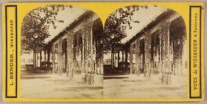 ALLEMAGNE Wiesbaden Photo PLn2 Stereo L. Bender Vintage Albumine ca 1865